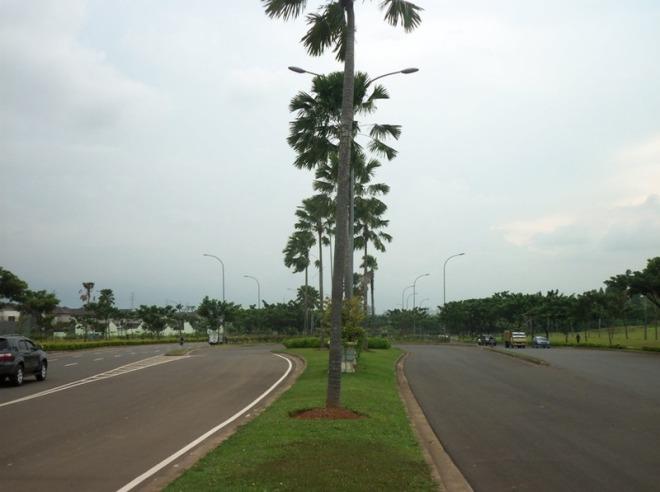 Boulevard BSD 2 - dari median tengah