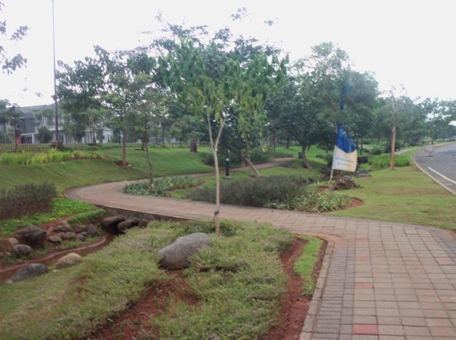 Pedestrian Foresta Park