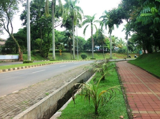 University of Indonesia Boulevard Pedestrian 2