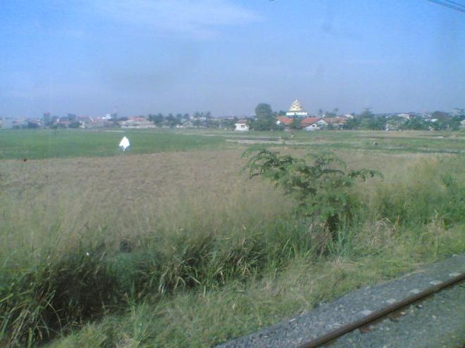 Pemandangan hijau di Tangerang, sawah dan sebuah bangunan unik nun jauh di sana
