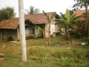Pemukiman desa Cisauk