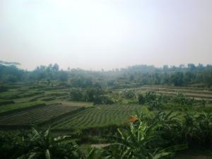 Asoooyyy ('Lembah' Parung Panjang 2)