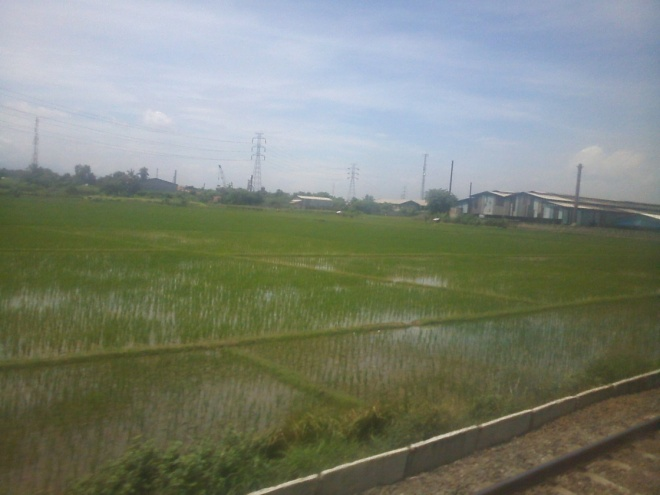 Paddy fields mixed with industry and residence