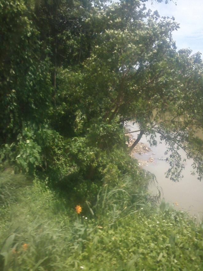 Bekasi River (2)