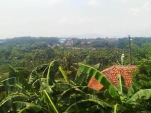 Pemandangan cantik lembah Cilebut di sisi kanan rel, di lembah itu mengalir dengan tenang Sungai Ciliwung.. nun jauh di sana di ketinggian adalah jalan raya Bogor - Kedung Halang - Cibinong