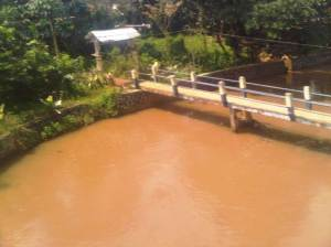 INilah sungai dari Jembatan Merah yang 'setia menemani' rel KA Bogor sampai Depok nanti