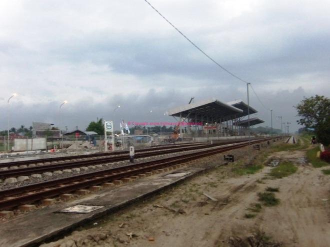 Deli Serdang - Batang Kuis (10)_800x600
